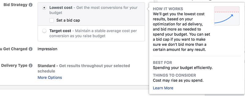 Facebook Ads Bidding Strategy - Chainlink Relationship Marketing
