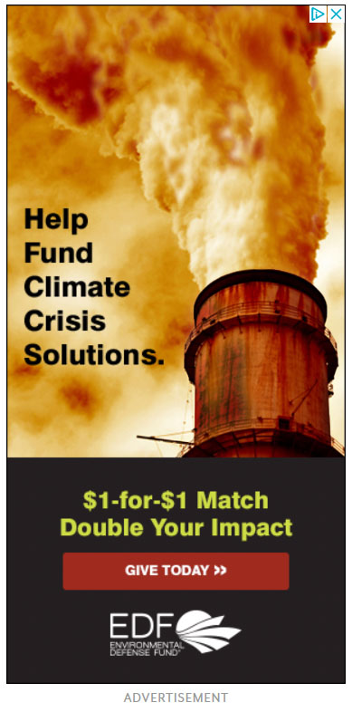 Google Display Ad Example Environmental Defense Fund