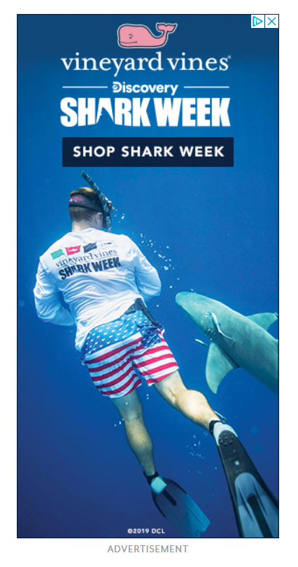 Google Display Ad Example Vineyard Vines