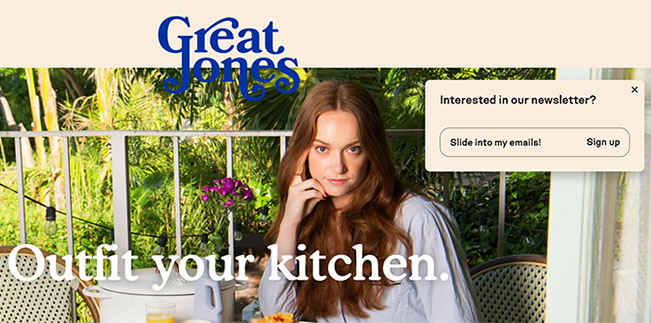 Landing Page Example - Great Jones